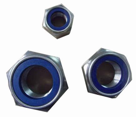 Hex Nylon Nut 1